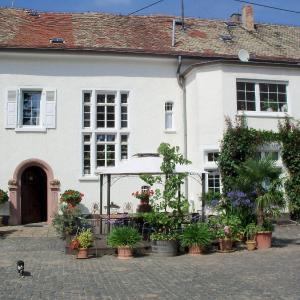 Hotel Pictures: Weingut, Gästehaus und Kräuterhof, Flomborn