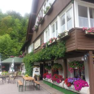 Hotelbilleder: Landhaus Walkenmühle, Bonndorf im Schwarzwald