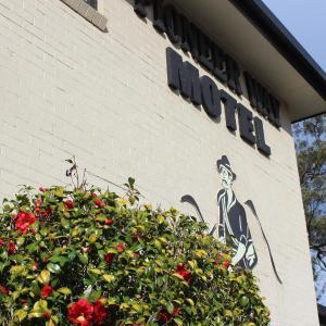 ホテル写真: The Pioneer Way Motel, Springwood