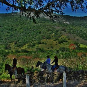 Hotel Pictures: Fazenda da Roseta, Baependi