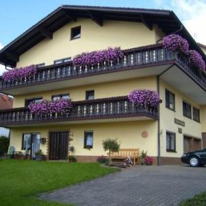 Hotel Pictures: Pension Am Limespfad, Hesseneck