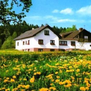 Hotelbilleder: Gasthaus-Pension Zum Brandweiher, Amorbach