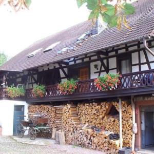 Hotelbilleder: Ferienwohnungen Lindenhof, Beerfelden