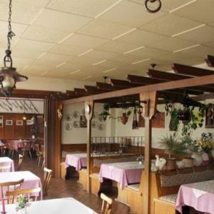 Hotelbilleder: Gasthaus Zum Goldenen Lowen, Finkenbach