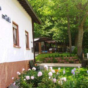 Hotel Pictures: Haus am Wald, Grasellenbach