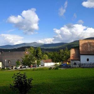 Hotel Pictures: Berggasthof Lusen, Neuschönau