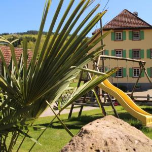 Hotel Pictures: Offenburger Hof, Schuttertal