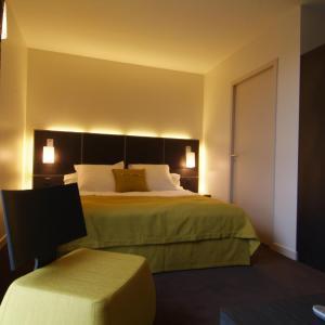 Hotel Pictures: Inter-Hotel Marytel, Montbrison