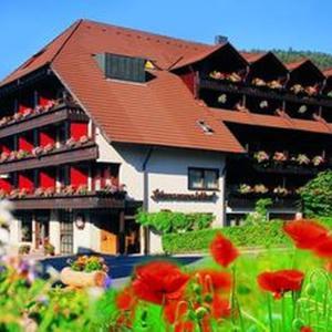 Hotelbilleder: Hotel Schwarzwaldhof, Enzklösterle
