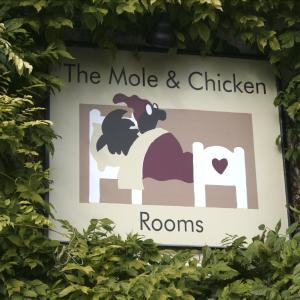 Hotel Pictures: The Mole and Chicken, Thame