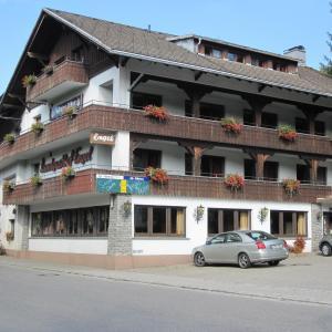 Hotelbilleder: Alemannenhof Hotel Engel, Rickenbach