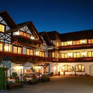 Hotelbilleder: Hotel Thüringer Hof, Floh