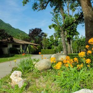 Hotel Pictures: Camping Le Sédour, Surba