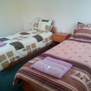 Foto Hotel: Family Hotel Drumex, Rudozem