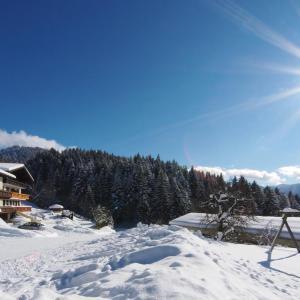 Fotografie hotelů: Alpenapartments Unterschlag, Annaberg im Lammertal