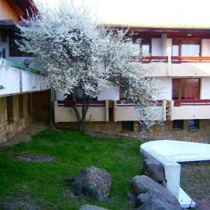 Hotellikuvia: Complex Izvorite, Mineralni Bani