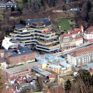 Hotel Pictures: Ferienwohnung Sommerberg, Bad Wildbad