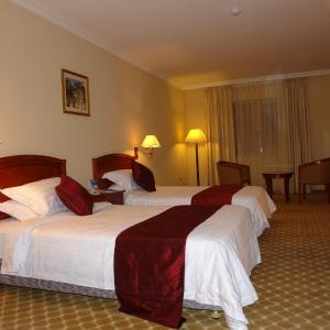 Hotel Pictures: Dreamliner Hotel, Addis Ababa
