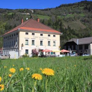 Hotelbilleder: Gasthof Steinerwirt, Predlitz