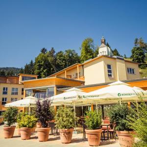Hotelbilleder: Heilmoorbad Schwanberg, Schwanberg