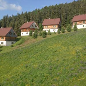 Hotelbilder: Almhütten Moselebauer, Klippitztorl