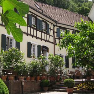 Hotelbilleder: Gasthaus Zur Sonne, Badenweiler