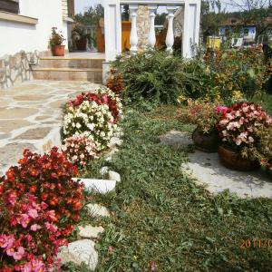 Photos de l'hôtel: Guest House Debrina, Apriltsi