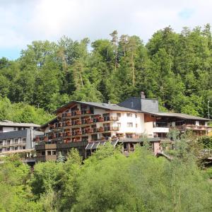 Hotelbilleder: Ringhotel Mönch`s Waldhotel, Unterreichenbach