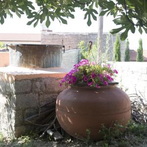 Hotel Pictures: Marianna Mansion, Pachna