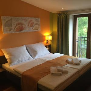 Hotel Pictures: Casino & Hotel Admiral Strazny, Strážný