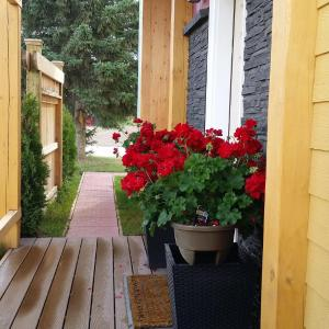 Hotel Pictures: Eileen's Bed & Breakfast/Guest House, Hay River