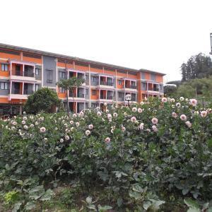 Hotelfoto's: Grand Orri Hotel & Convention, Berastagi