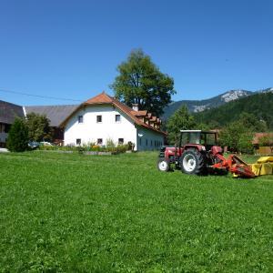 Fotografie hotelů: Ferien am Land - WALDBAUER, Rossleithen
