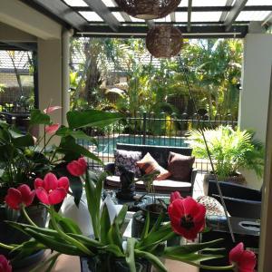 Hotellikuvia: Avon Lodge B&B Bribie Island, Banksia Beach