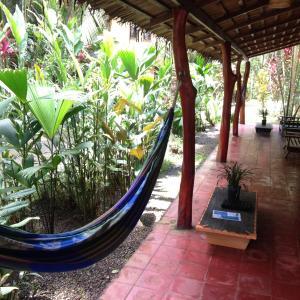 Hotel Pictures: Mi Casa Hostel y Hotel El Tesoro, Cocles