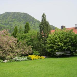 Hotel Pictures: Ferienwohnungen Elisabeth am See, Rottach-Egern