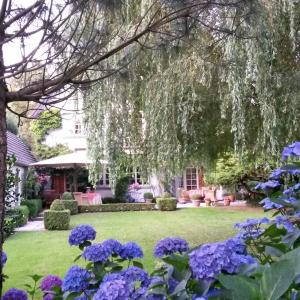 Hotelbilleder: B&B Willow Lodge, De Pinte