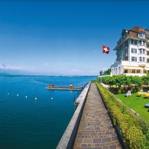 Hotel Pictures: Hotel Restaurant Bellevue au Lac, Thun