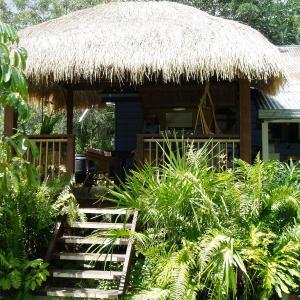 Фотографии отеля: Mango tourist Hostel, Херви-Бэй