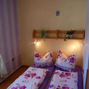 Hotel Pictures: Penzion Eliska, Horní Planá