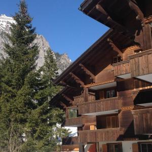 Hotel Pictures: 2,5 -Zimmer Ferienwohnung Résidence Bernerhof, Kandersteg