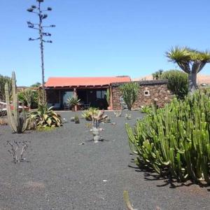 Hotel Pictures: Plitina, Teguise