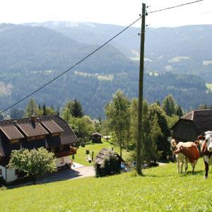 Foto Hotel: Ferienwohnung Lahnerhof, Arriach