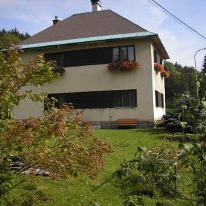 Hotel Pictures: Apartment Arnika, Kořenov