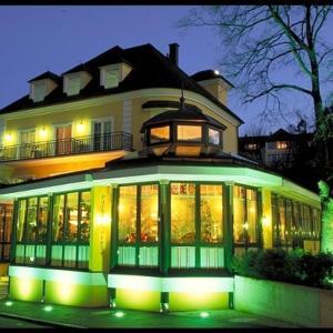 Hotellikuvia: Parkhotel Neubauer, Sauerbrunn