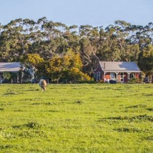 Fotos de l'hotel: Freshwater Creek Cottages & Farm Stay, Torquay