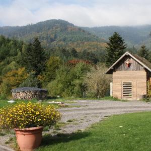 Hotel Pictures: À L'Orée du Bois, Oberhaslach