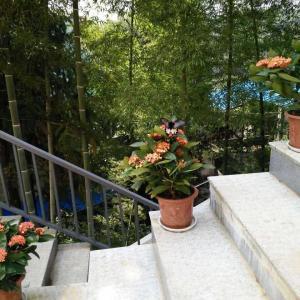 Hotel Pictures: Leyouyou Garden Inn, Xingzi