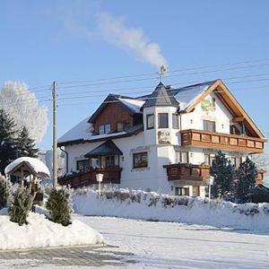 Hotelbilleder: Hotel Alpenhof, Markneukirchen