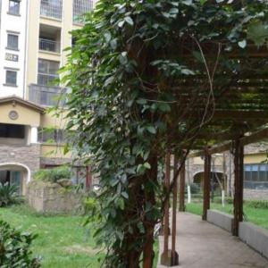 Hotel Pictures: Guiyang Shinian Youth Hostel, Guiyang
